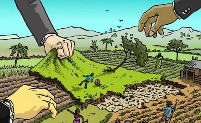Как найти хозяина земельного участка, который кажется заброшенным