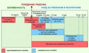 В течение какого времени выплачивают декретные пособия в России