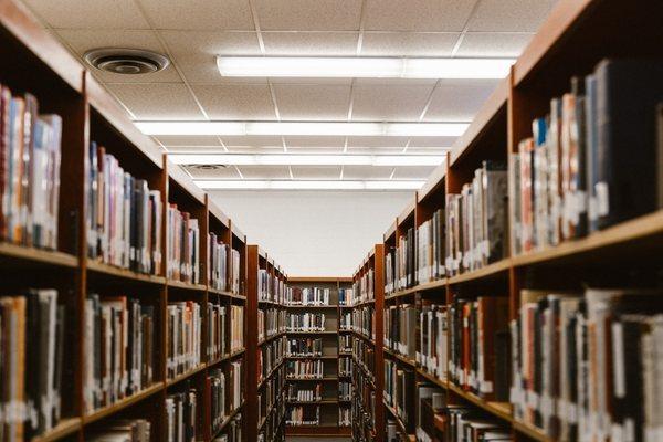 Как получить налоговый вычет на обучение: основные моменты