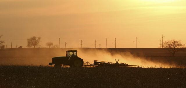 Что такое приватизация земельного участка. Особенности процедуры