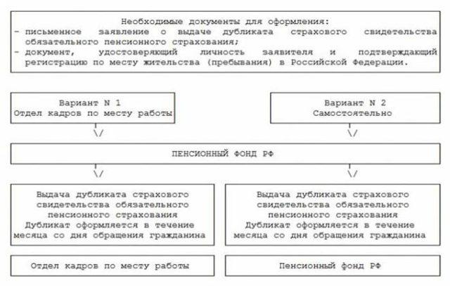 Как восстановить СНИЛС при утере: что это за документ и что делать когда он потерян