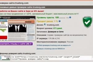 Мошенничество в сети Интернет: проверяем сайты