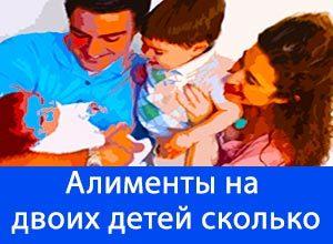 Сумма алиментов за двоих детей: сколько платить
