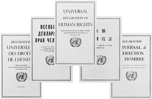 Какие права имеет человек, реализация и защита прав и свобод, защита прав человека на международном уровне