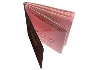 Перечень документов на загранпаспорт: собираем необходимые