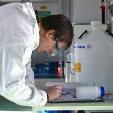 Экспертиза некачественного товара, порядок действий при покупке испорченной вещи, производство исследования