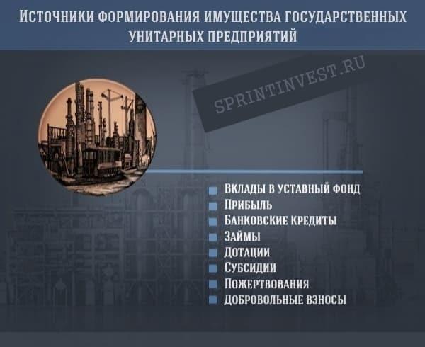 Государственные и муниципальные унитарные предприятия: особенности и нюансы