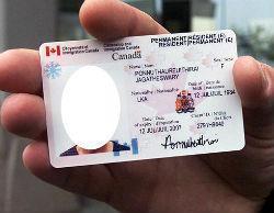 Уехать в Канаду на ПМЖ из России: подготовительные этапы, документы, преимущества и недостатки