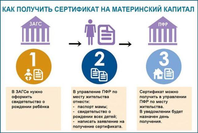 Где получить материнский сертификат: в какой орган обращаться?