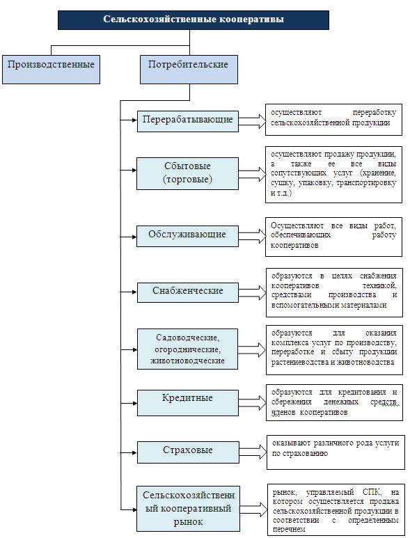 Кооперативная форма собственности: особенности, разновидности преимущества